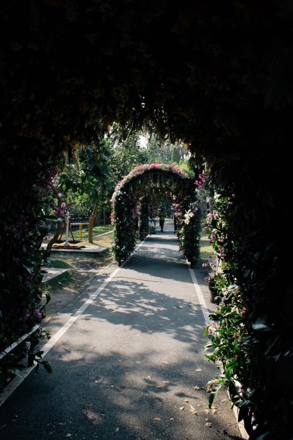 Flower tunnels